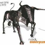 raport GPW luty 2019