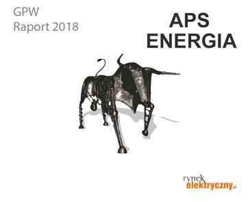 Firmy elektrotechniczne na GPW APS Energia