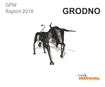 Firmy elektrotechniczne na GPW Grodno