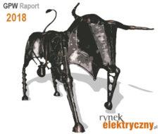 raport 2018 firmy elektrotechniczne